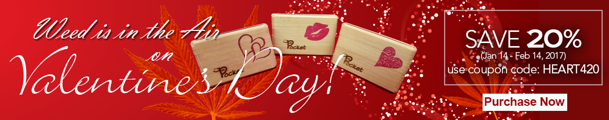 valentines day - pot pockets